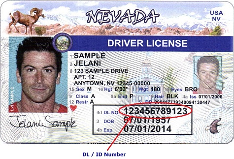 Find your driver's license number or identification card number.
